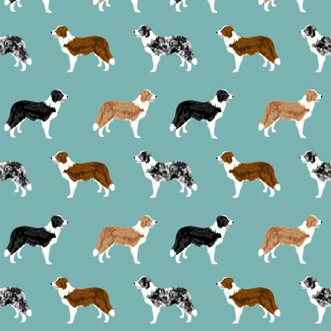 Rborder-collie-mixed_shop_preview