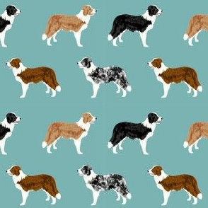border collie mixed coats dog breed fabric blue green