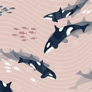 Orca in Motion Blush