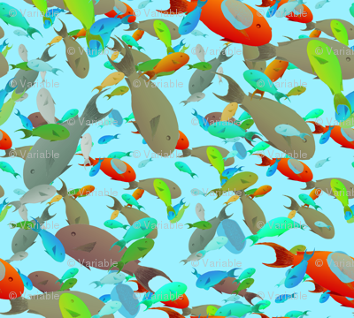busy and chaotic fish