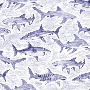Pencil Sketched Sharks Blue