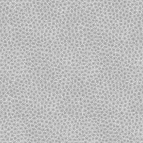 simplified petoskey stone, light greyscale, 1/6""