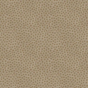 simplified petoskey stone, dark natural, 1/6""