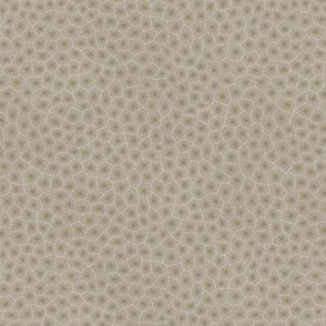 simplified petoskey stone, light natural, 1/4""