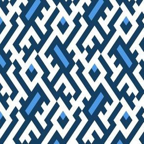 blue maze 16_0370