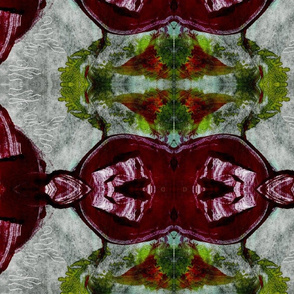 Dark crimson swish print (3)