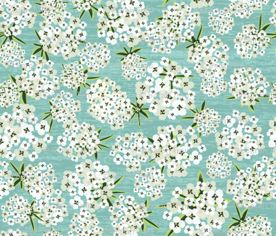 Stephanie's Alyssum - Teal
