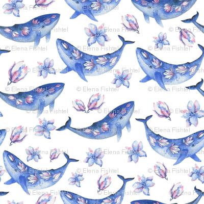 Blue magnolia whale