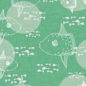 Mola Mola Green-Ocean sunfish