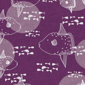 Mola Mola Purple-Ocean sunfish