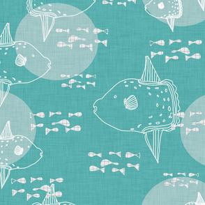 Mola Mola Teal-Ocean sunfish