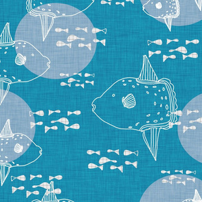 Mola Mola Blue-Ocean sunfish