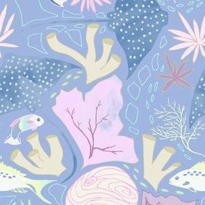 Pennekamp reef, denim