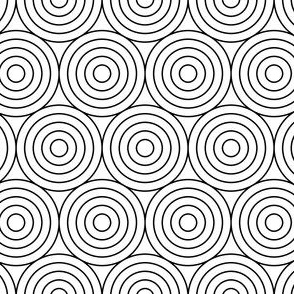 07662191 : R6 concentric circles