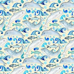 Dolphin Frolic