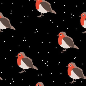 Winter wonderland red robin birds in snow night black red