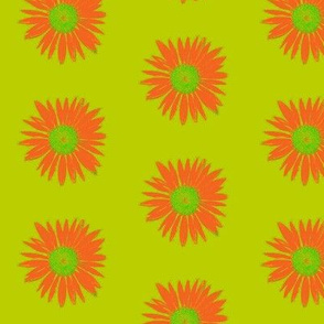 Orange on Chartreuse Daisy Days