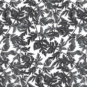 Rrgray-leaves-02_shop_thumb