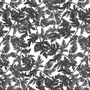 18-06J Leaf Leaves Black White Gray Grey  Tree Neutral Home Decor _ Miss Chiff Designs