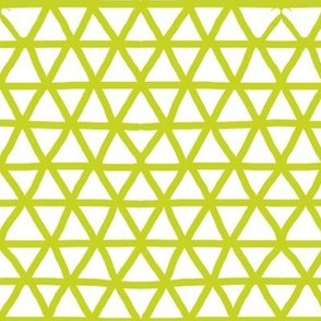 Triangle mesh in cactus
