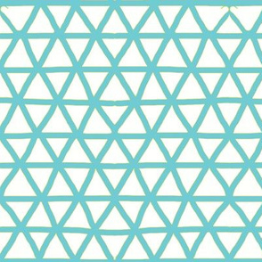 Triangle mesh in blue