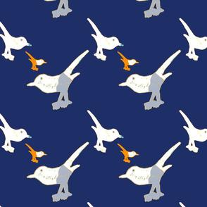 Playful birds 3