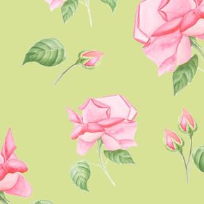 Pattern rose on green