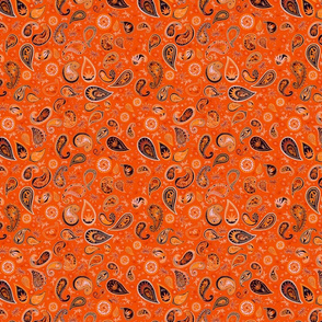 420 Hiphop Paisley Orange
