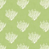 Rcoral-green-linen45-opacity-300dpi_shop_thumb