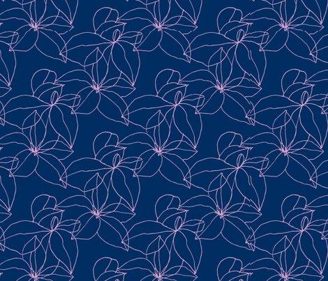 Rrkendra_shedenhelm_floral_drawings_stonecrop_img_20160610_0001_2_shop_preview
