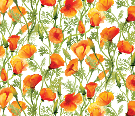 California Poppies - Large fabric by bristol_and_breve on Spoonflower - custom fabric