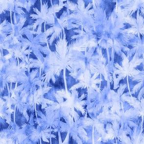 miami heat blue