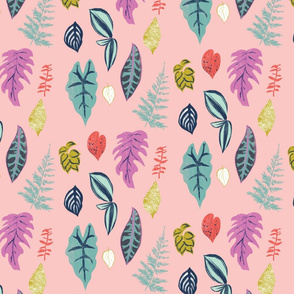 Leaf collection, fern, exotic botanical leave in pink