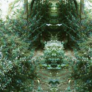 emrald forest