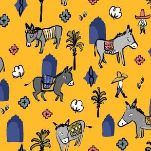 Morrocan Donkey