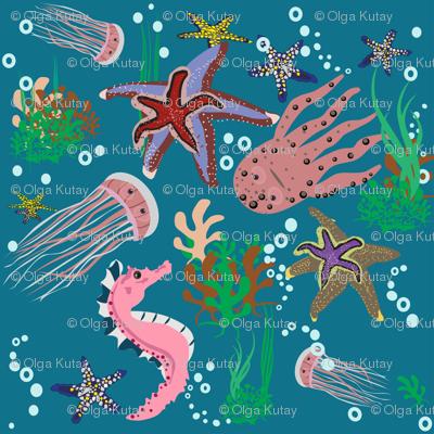 sea starfish jellyfish octopus sea Horse