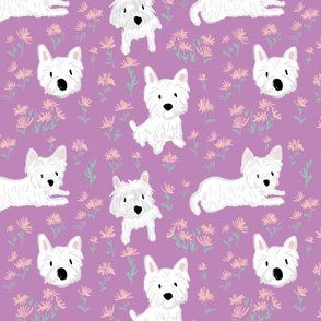 Westie - West Highland White Terrier purple