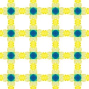 checkered geometric