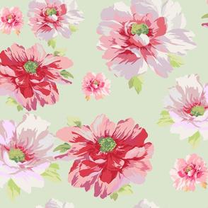 Blomma basil