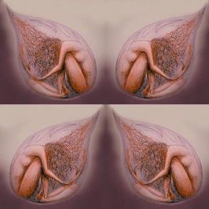 Vulnerability droplet (plum tones)