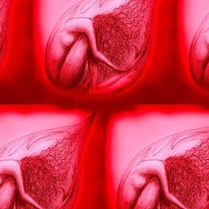 Vulnerability droplet (womb red)