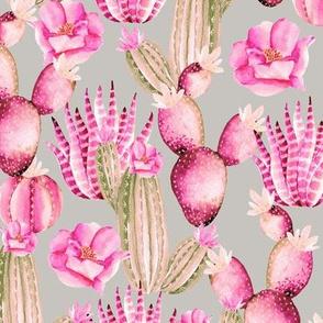 Pink cactus. Watercolor
