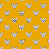 French Bulldogs_Yellow