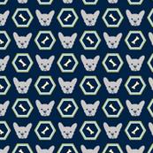 French Bulldog_Hexagon Blue