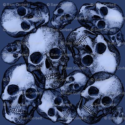 Denim blue skulls large