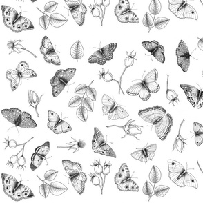 Black and white butterflies and roses