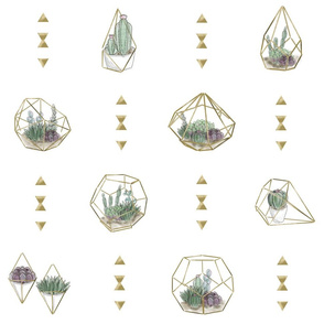 Geometric Succulents - Main White