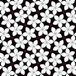 07675651 : S43 floral : elegant