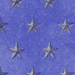 stars print blue white on blue