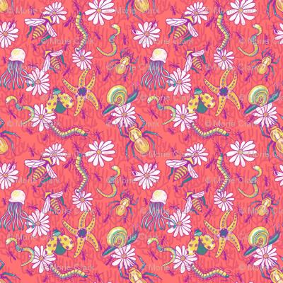 invertebrates and daisies